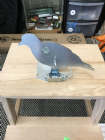 Large Bird Knock down pull reset target e